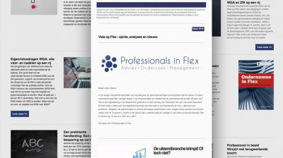 Professionals in Flex - uitvoering communicatie